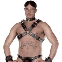 ledapol 8034 sm herre bryst seletøy i lær - gay harness
